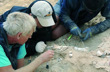 이융남 박사팀은 몽골 고비사막에서 데이노케이루스 외에도 여러 공룡 뼈 화석을 발굴했다. 사진은 오비랍토르 뒷다리 화석을 발굴하는 모습