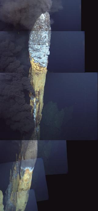 이번에 발견된 열수분출공은 길이가 20m가 넘어서 사진을 찍을 때 여러 번 나눠 찍어 이어 붙여야 했다.
