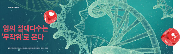 흔히 사람들은 암의 원인이 유전 또는 환경이라고 여긴다. 그러나 DNA가 복제되는 과정에서 무작위로 발생하는 오류가 주요 원인이라는 연구결과가 나왔다.