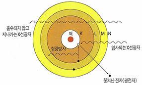 포항 방사광가속기 지상공개