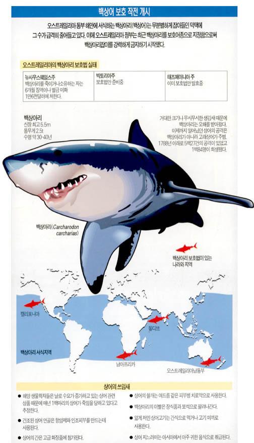 백상어 보호 작전 개시
