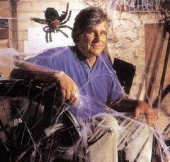 치밀한 설계 정교한 시공 거미줄의 미학