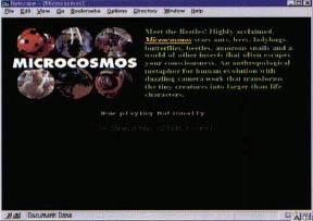 미시세계의 생명력 마이크로코스모스
