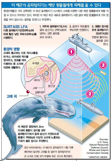 미 해군의 음파탐지기는 해양 동물에게 피해를 줄 수 있다