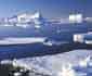 남극 극한 환경 무릅쓴 불굴의 도전