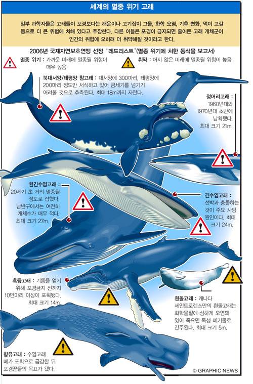 세계의 멸종 위기 고래