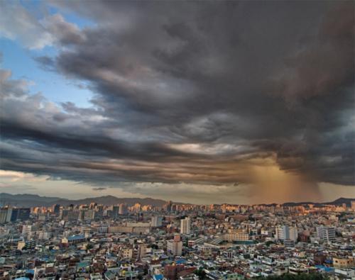 도시의 목덜미에 떨어지는 굵은 빗방울