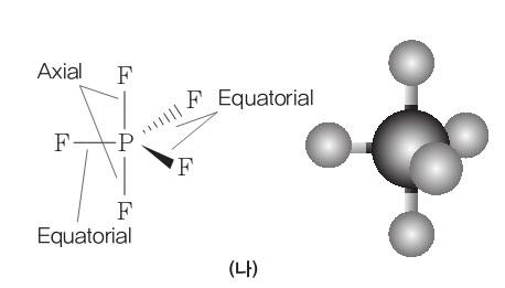 [화학]분자의 모양과 극성