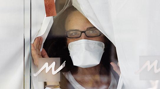 신종 인플루엔자 바이러스의 진실