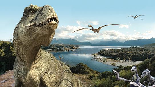 공룡 화석 발굴 키트 한반도의 공룡