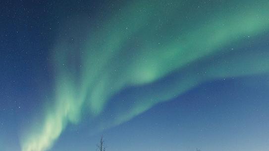 캐나다 옐로나이프의 오로라