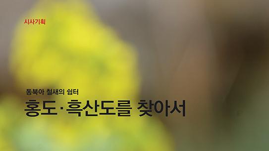 동북아 철새의 쉼터 홍도, 흑산도를 찾아서