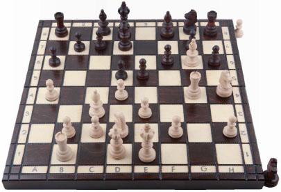 제3게임 수학으로 두는 체스