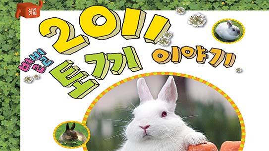 별별 2011 토끼 이야기