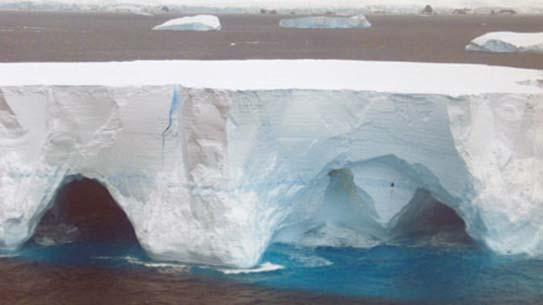 빙산은 남극 바다의 영양제