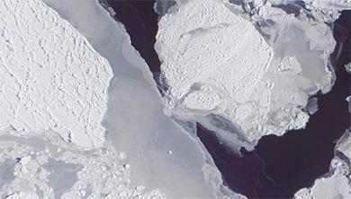 겨울 한파, 북극 해빙은 알고 있다