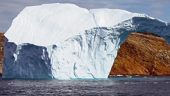 하루에 2cm, 기후를 지키는 움직임