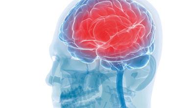 투명한 뇌, 우울증 신경을 찾다