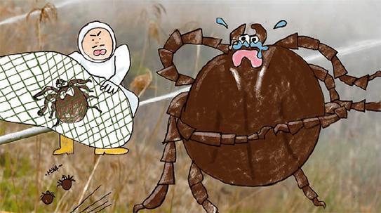 위생해충에 대한 오해와 진실, 진드기는 억울해!