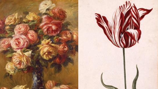 PART 3. 인간의 역사를 바꾼 꽃의 유혹