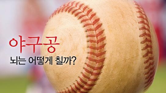 야구공 뇌는 어떻게 칠까?