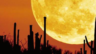 2014 가을 달이 빛나는 밤에