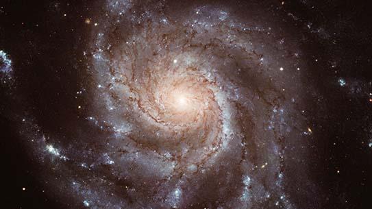 [수학뉴스] 우주의 시공간을 황금비율이 만든다?!