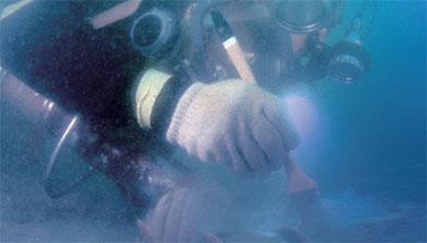 바닷속 경주에서 만난 수중 고고학