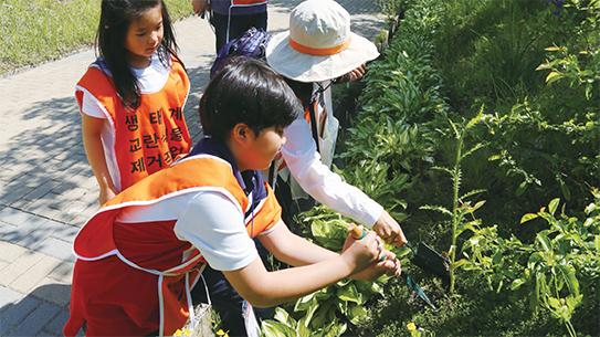 우리 가족은 식물학자! 국립수목원 귀화식물 탐사