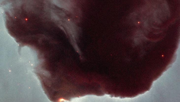 [과학뉴스] 우주에서 발견한 RNA의 기원