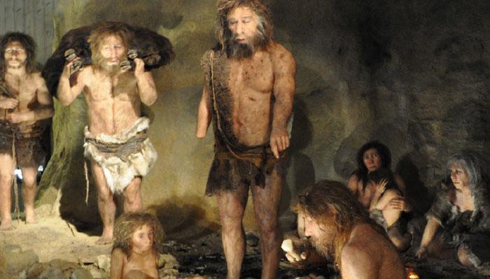 [News & Issue] 네안데르탈인, 너 식인종이었어?