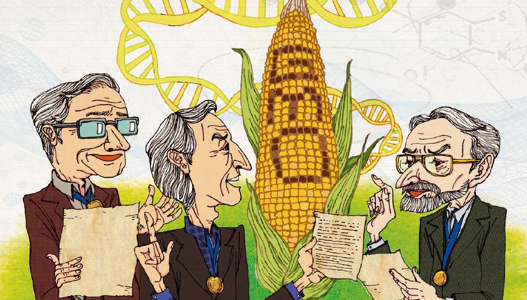 """[News & Issue] """"GMO 안전성 논쟁 종지부 찍자"""""""