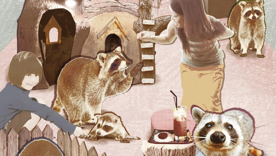 [News & Issue] 동물카페 동물들이 사는 법