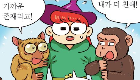 [가상 인터뷰] 우리의 먼~ 친척, 안경원숭이!