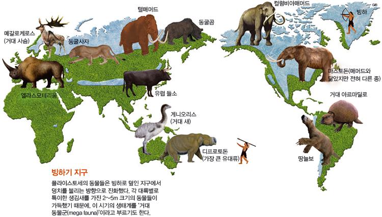Part 2. 빙하기 땅이 꽁꽁 얼면 동물이 커진다?
