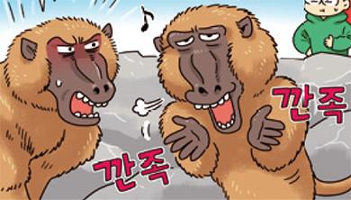 """[가상인터뷰] 개코원숭이도 """"아에이오우~!"""""""
