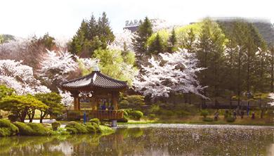 [찰칵 퍼즐 여행] 꽃처럼 피어오르는 문화 경주
