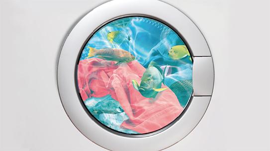[Issue] 내 옷이 만든 재앙 해양 미세섬유의 습격