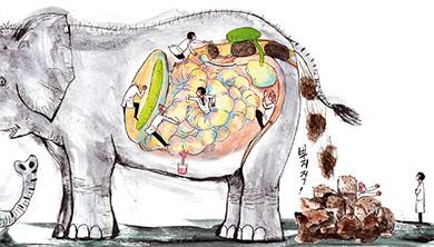 [Future] 코끼리가 초속 6cm로 똥 누는 비결은?