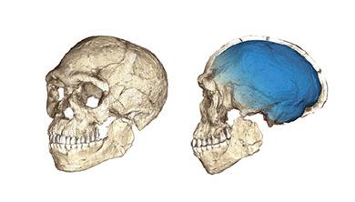 [과학뉴스] 30만 년 전에 태어난 현생인류!