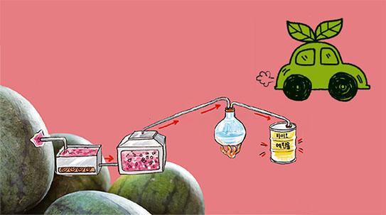Part 3. [변신 3단계] 수박으로 움직이는 자동차
