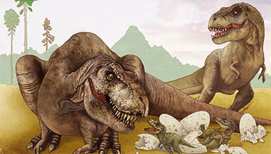 [공룡은 왜?] 골반 뼈가 넓으면 암컷? 공룡의 암수 구별법