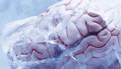 Part 4. [도전 ➌] 냉동 인간의 핵심은 뇌!