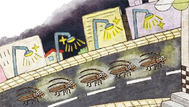 Part 2. 하늘소떼가 도시까지 몰려온 이유