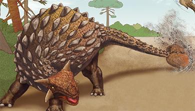 [공룡은 왜?] 휘두르기만 해도 티라노가 깜짝? 안킬로사우루스의 꼬리 곤봉