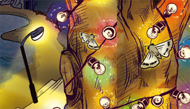 Part 2. 생태계에 심각한 피해를 주는 빛 공해