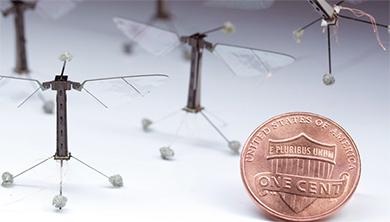[과학뉴스] 초소형 벌 로봇, 진짜 벌처럼 윙윙~!
