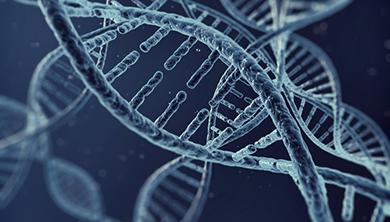[과학뉴스] 자폐증 일으키는 유전자 '삼돌이' 확인