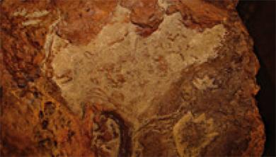 [과학뉴스] NASA에서 1억 년 전 발자국 발견!