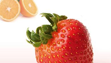 내가 제일 잘 나가, '과일의 제왕' 딸기